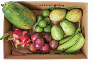The Tropical Fruit Box
